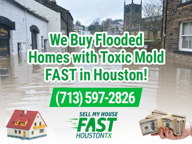 houston water damage and mold